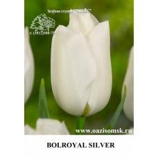 BOLROYAL SILVER