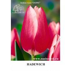 HADEWICH